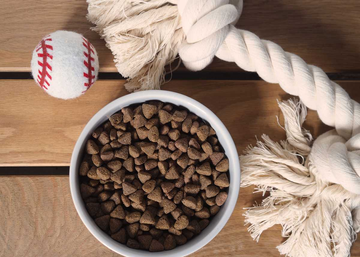 Bowl of Yora pet food
